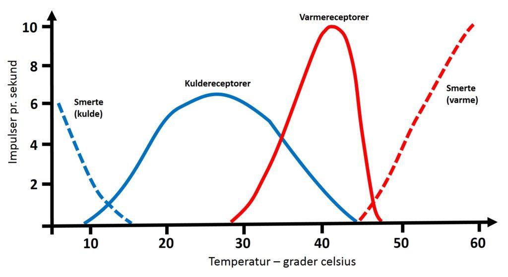 Termoreceptor, resppons, hudsanser